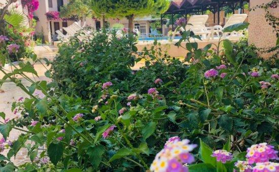 Arda Villas Havuz & Bahçe